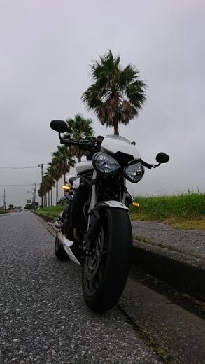 f:id:yoshi_skywalker:20190814223714j:plain