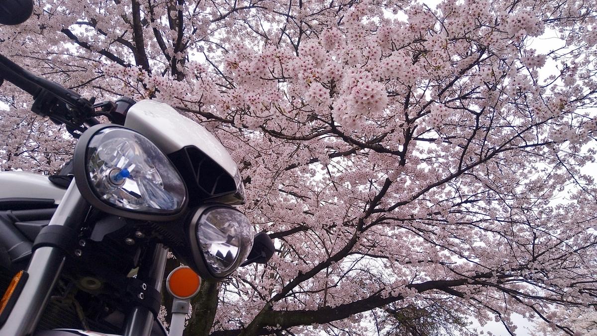 f:id:yoshi_skywalker:20210405235508j:plain