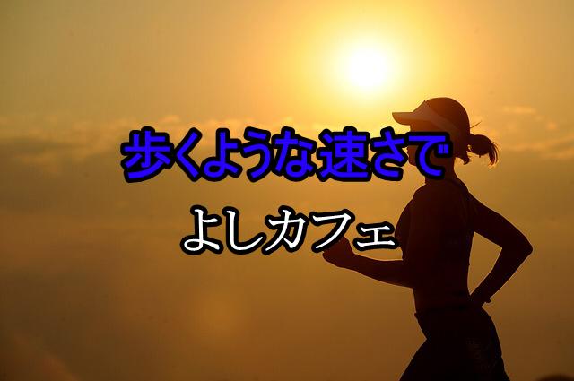 f:id:yoshi_the_primary:20180101082247j:plain