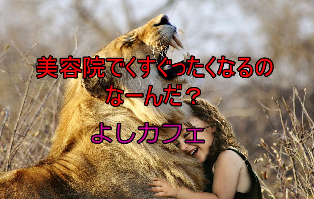 f:id:yoshi_the_primary:20180112082533j:plain