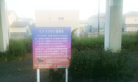 f:id:yoshibey0219:20180910025708j:image
