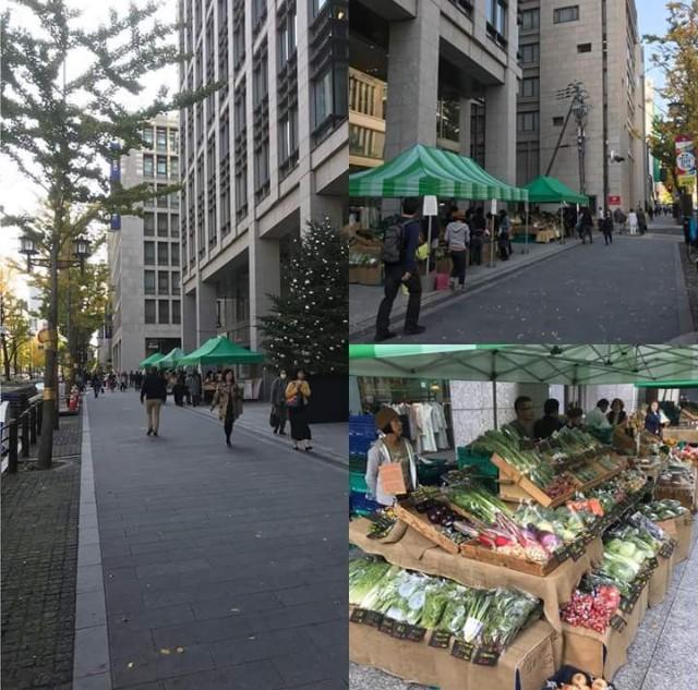 f:id:yoshida-fruit:20180622024738j:image