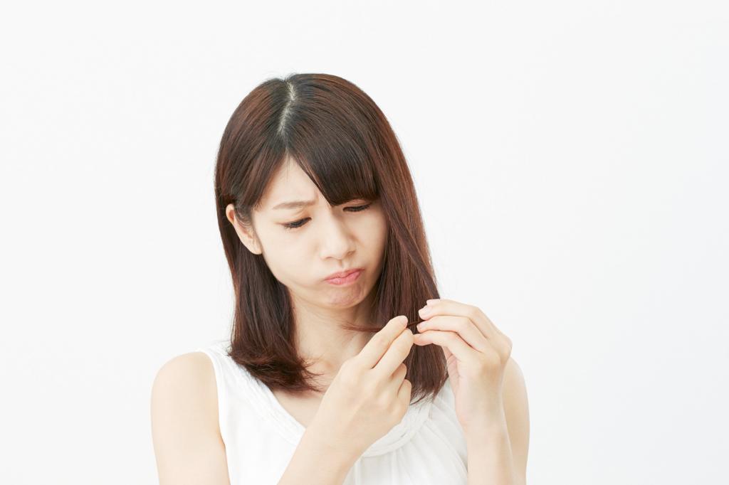 f:id:yoshida-masahiro:20161210104232j:plain