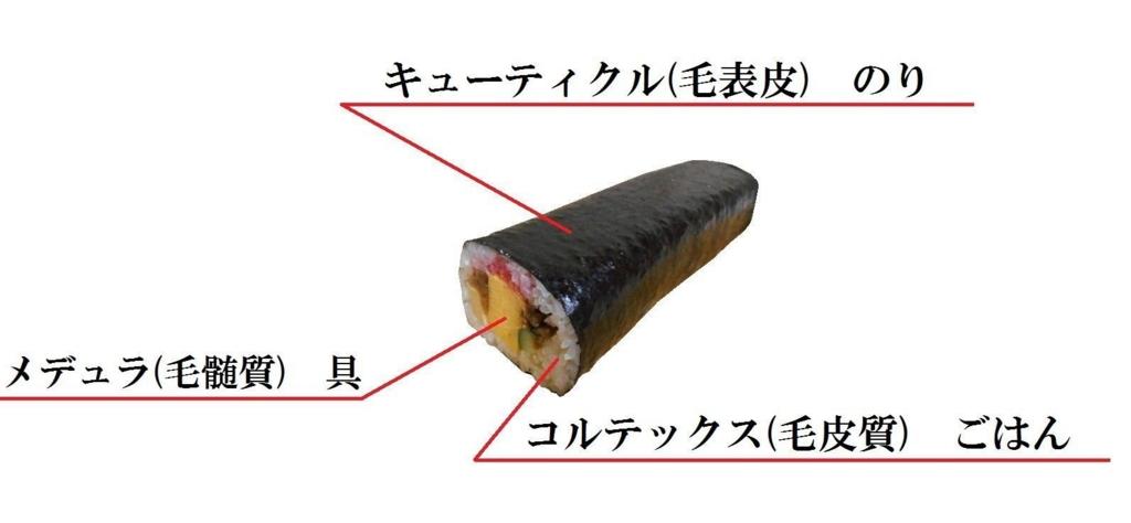 f:id:yoshida-masahiro:20161217081612j:plain