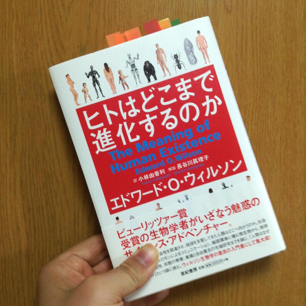 f:id:yoshida-nariaki:20160714204154j:plain
