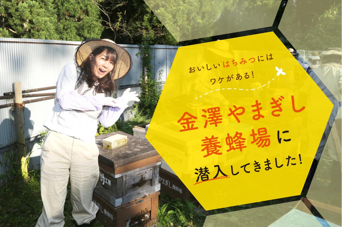 f:id:yoshida-yumi:20200629173834p:plain
