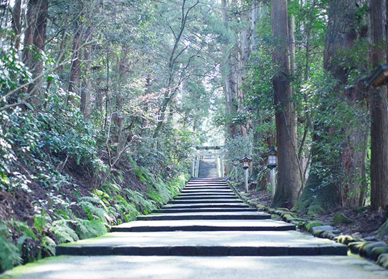 f:id:yoshida-yumi:20201218150853j:plain