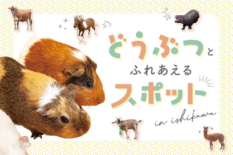 f:id:yoshida-yumi:20210907110145j:plain