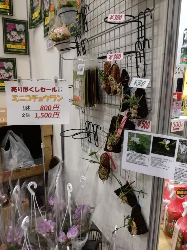 f:id:yoshida_lab:20180426222512j:plain