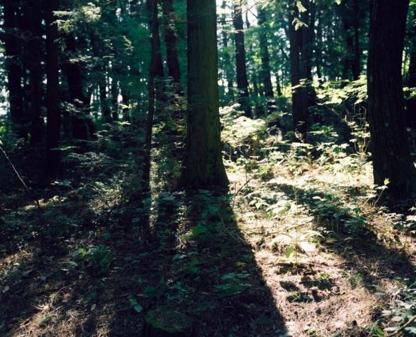 f:id:yoshida_melon:20151116164731j:image
