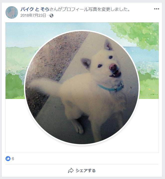 f:id:yoshidaagri:20190216163445p:plain
