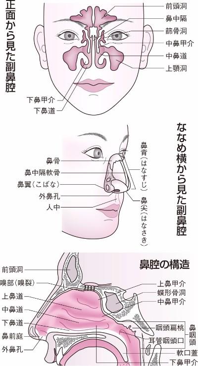 f:id:yoshidaagri:20200402093028p:plain