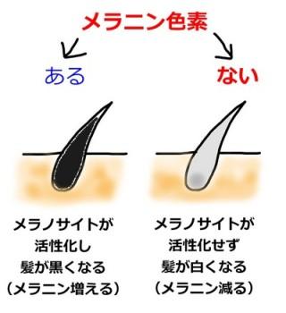f:id:yoshidamasahiro:20160814202241j:plain