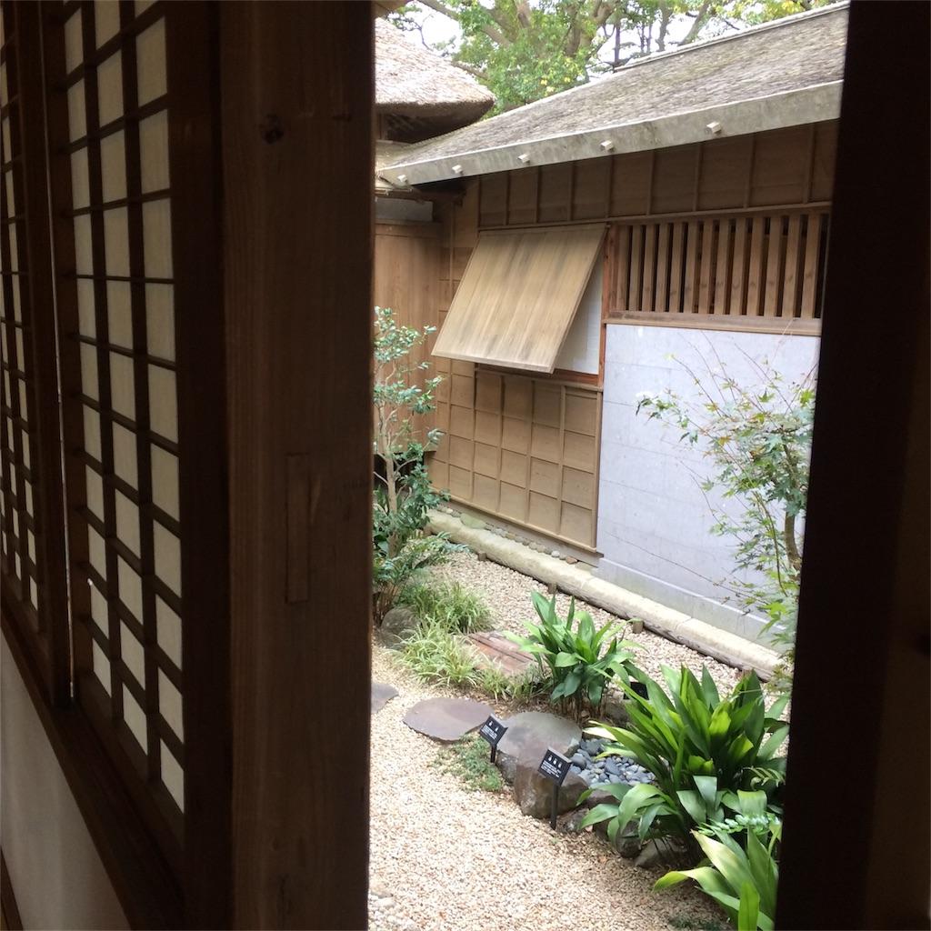 f:id:yoshidamidori:20161231182030j:image