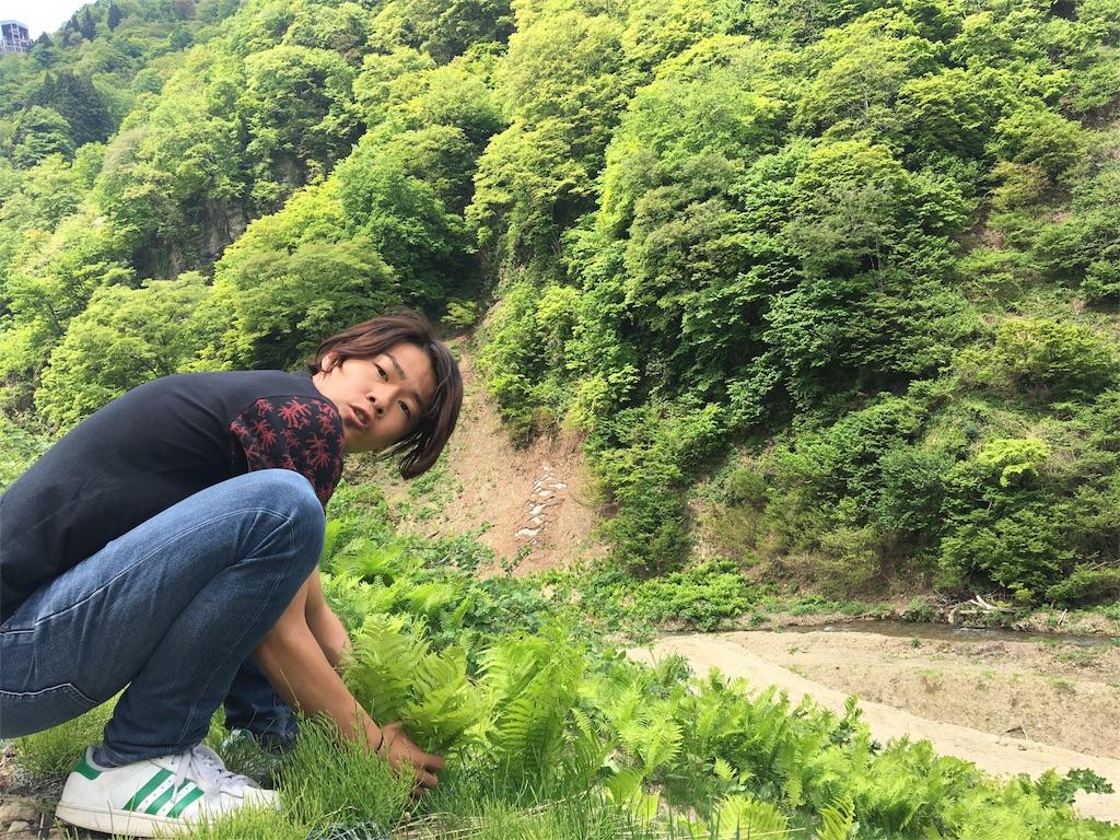f:id:yoshidashuan:20170519005600j:image