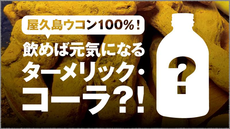 f:id:yoshidaya100:20210208155440j:plain