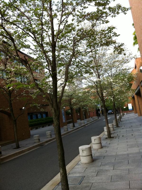 f:id:yoshiepen:20110425072812j:image:w360