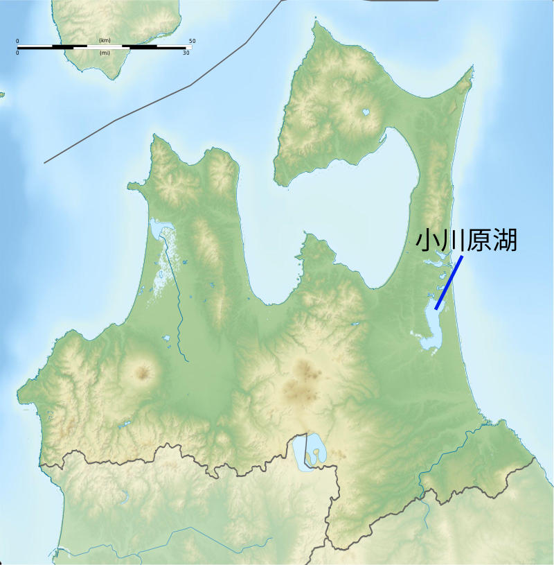 f:id:yoshihide-sugiura:20210124022518p:plain