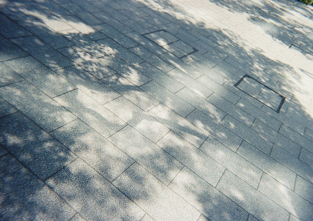 LomographyのSimple Use Film Camera