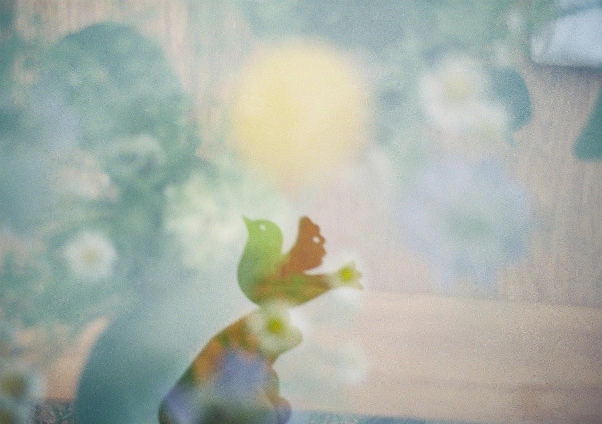 LOMO LC-A+で多重露光撮影してみた