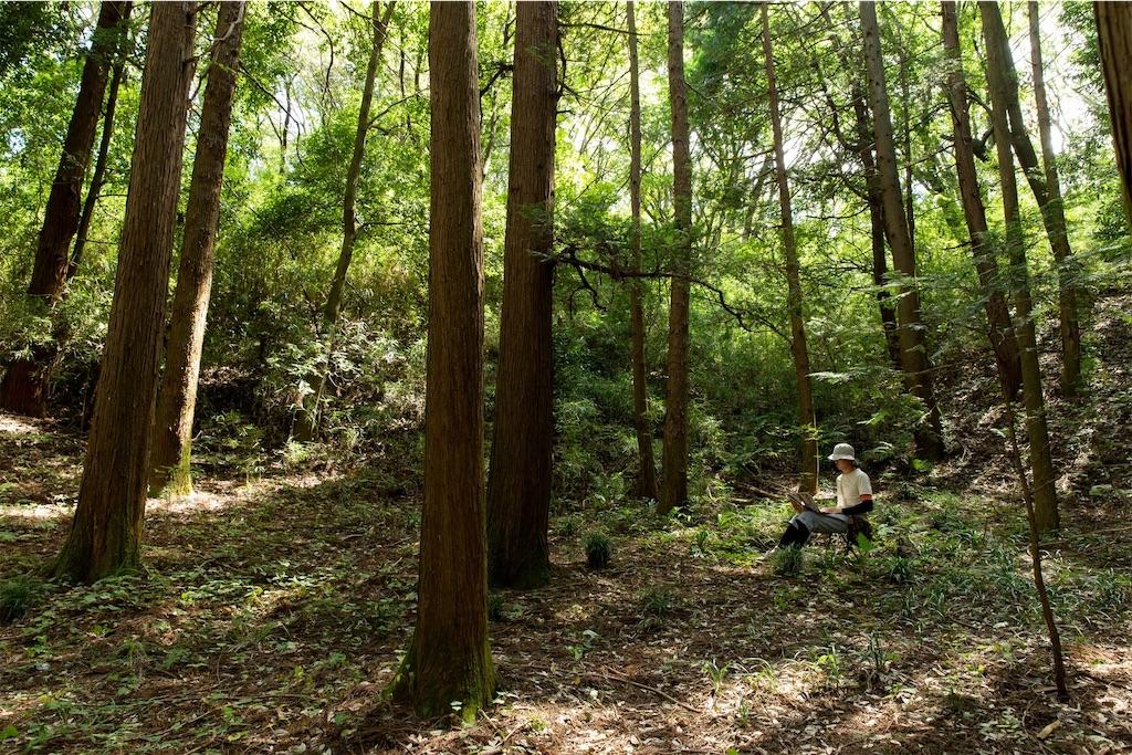 f:id:yoshihiroakai10:20200501180819j:image