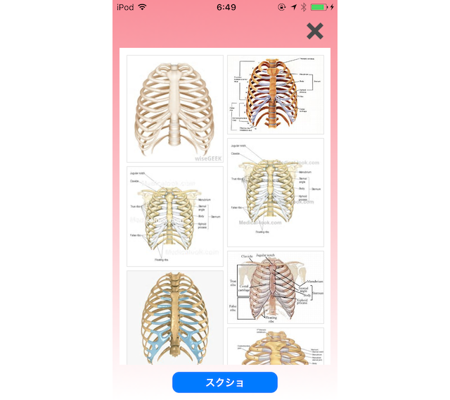 f:id:yoshii_hiroto:20170516195826p:plain