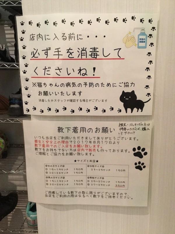 f:id:yoshii_hiroto:20180108135458j:plain