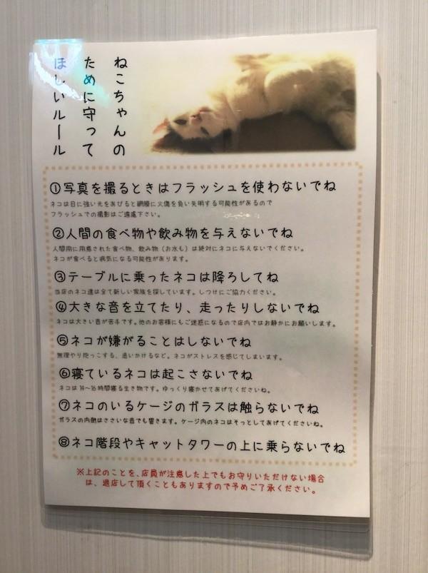 f:id:yoshii_hiroto:20180108135522j:plain