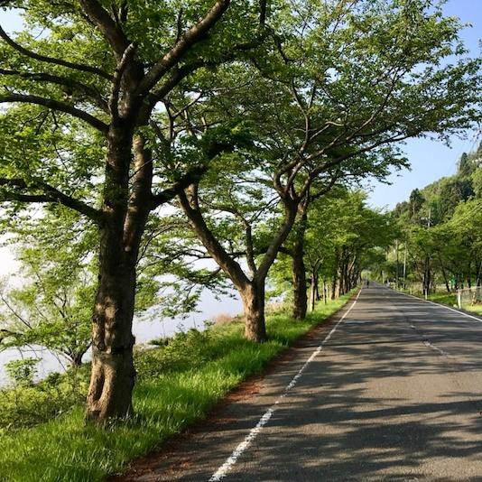f:id:yoshijiji:20210309115423j:plain