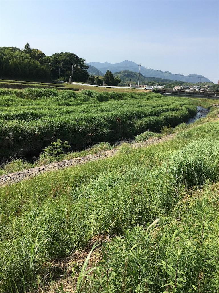f:id:yoshik0515:20170605104154j:image