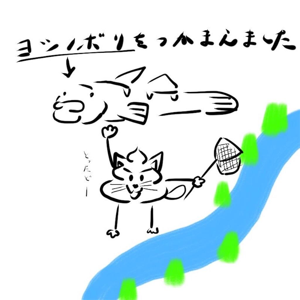 f:id:yoshik0515:20170619104346j:image