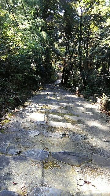 f:id:yoshikamama:20161126181317j:image