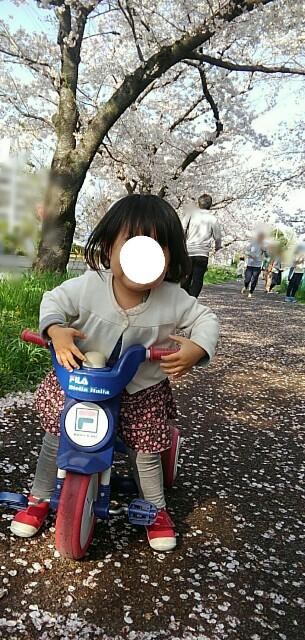 f:id:yoshikamama:20170409233155j:image