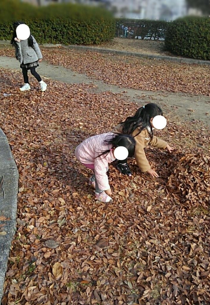 f:id:yoshikamama:20180102151301j:plain