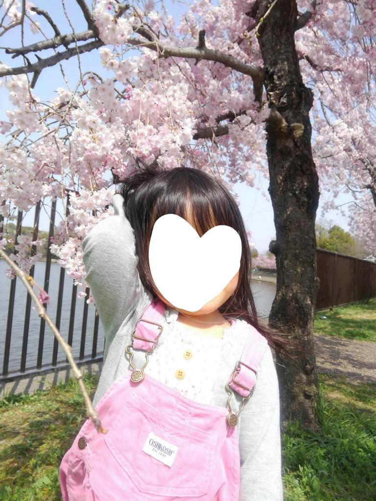 f:id:yoshikamama:20180401203536j:plain
