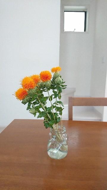 f:id:yoshikamama:20200620202532j:image