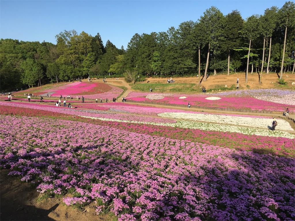 f:id:yoshikawa-yume-yume:20170506081046j:image