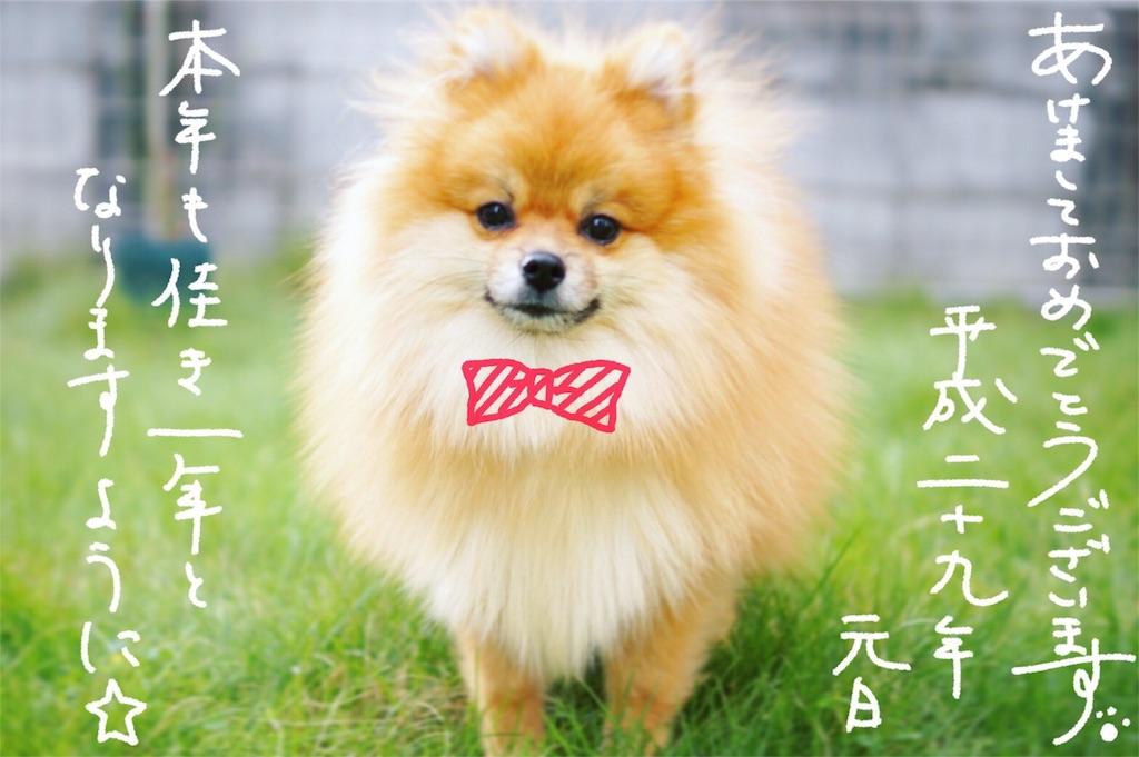 f:id:yoshikawalinen:20170105193354j:image