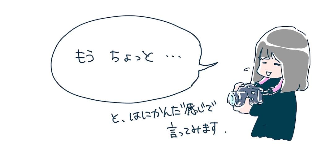 f:id:yoshikawalinen:20170608025032j:image