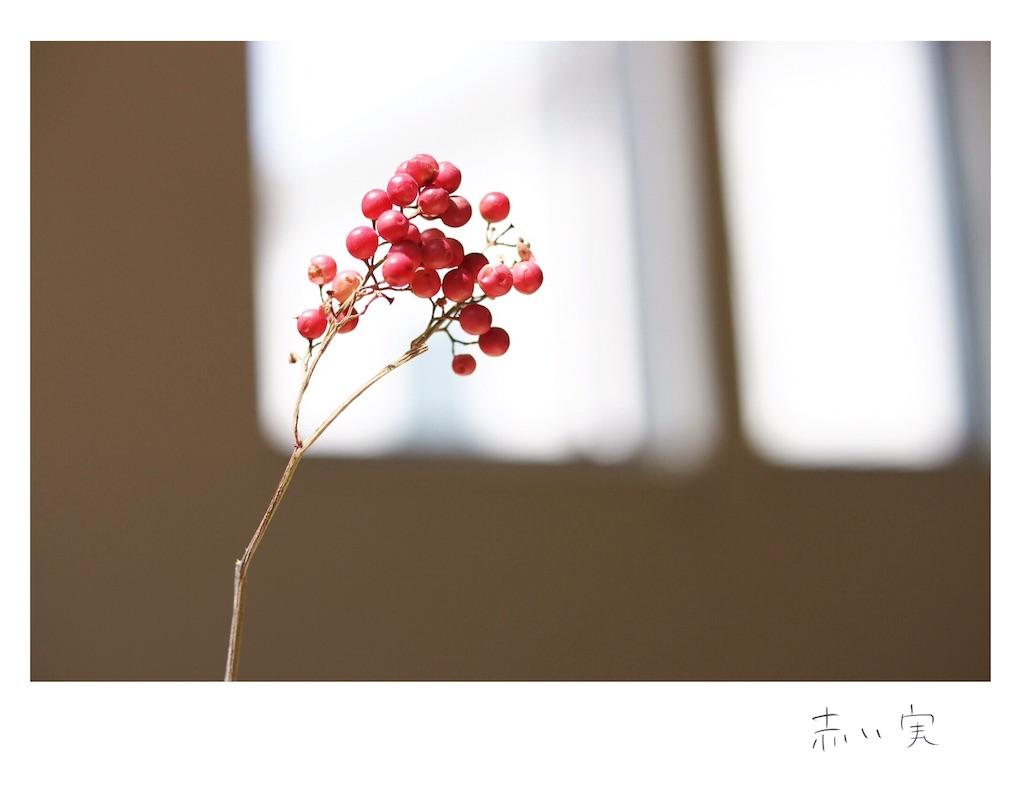 f:id:yoshikawalinen:20170622173048j:image