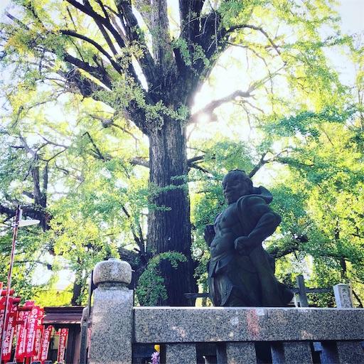 f:id:yoshiki_kaneko:20191119132635j:image