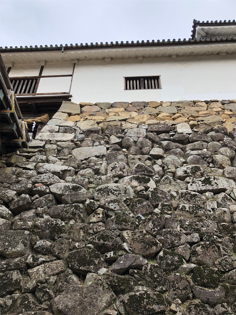 f:id:yoshiko062782:20190129103031j:image