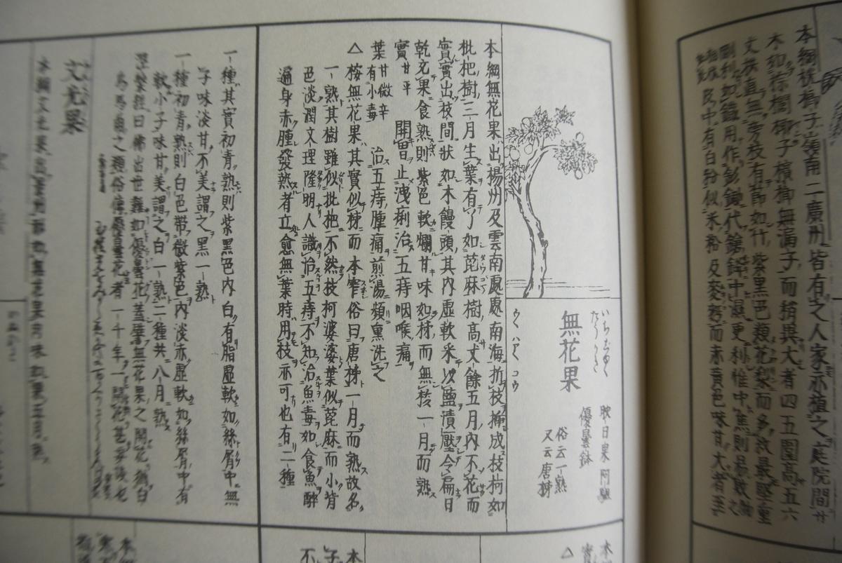 f:id:yoshiko1260:20191018165729j:plain