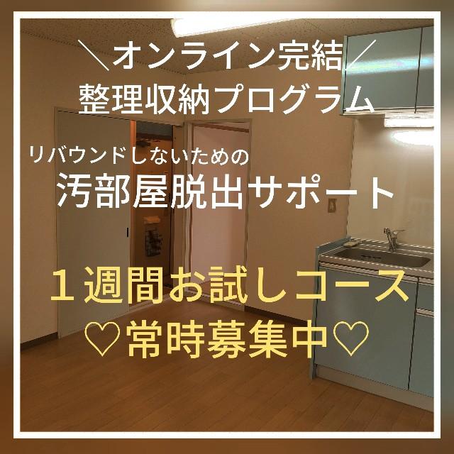f:id:yoshiko295:20210216065909j:image