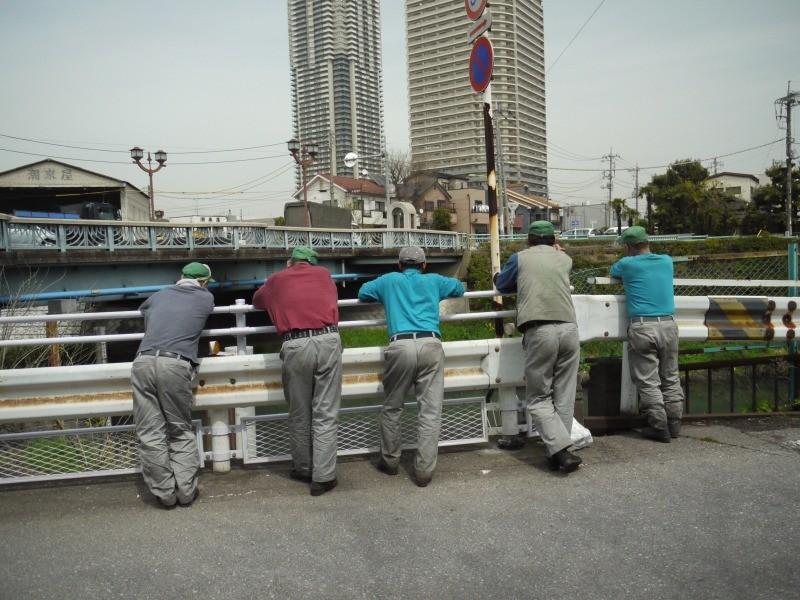 f:id:yoshikogahaku:20100426181108j:image