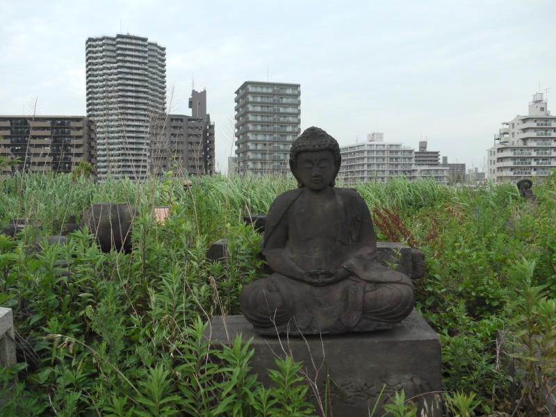 f:id:yoshikogahaku:20100616111324j:image