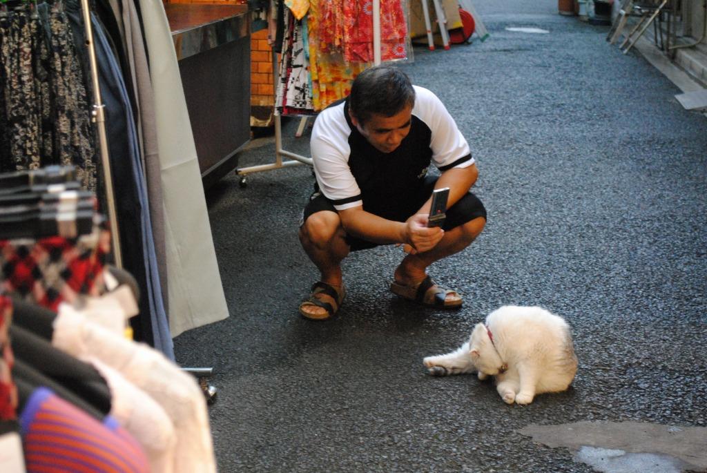 f:id:yoshikogahaku:20100917093353j:image
