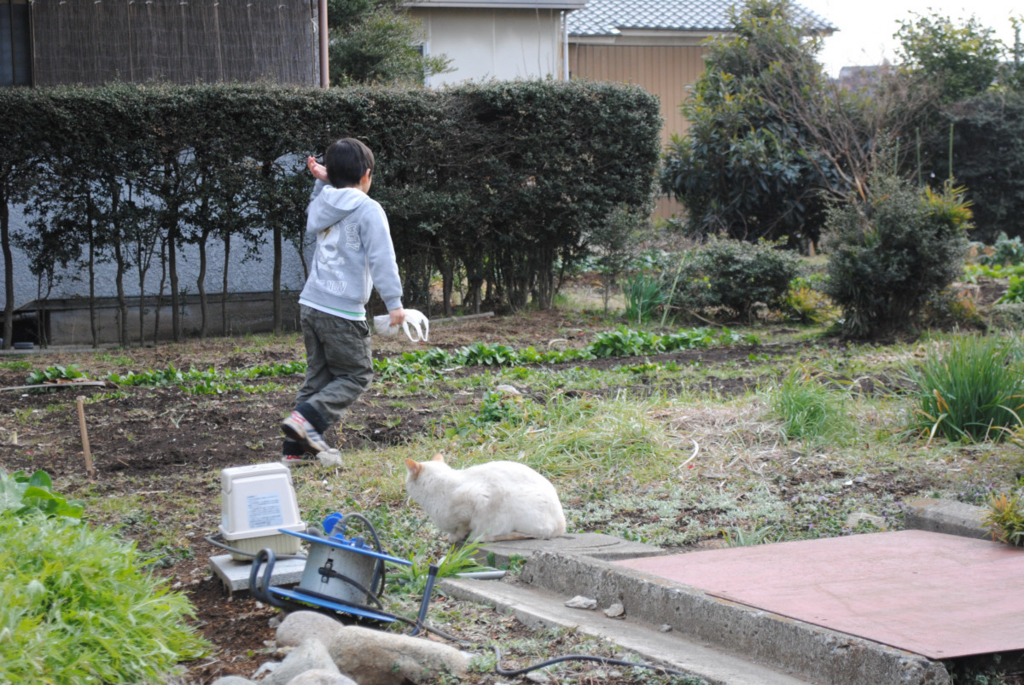 f:id:yoshikogahaku:20110220233124j:image