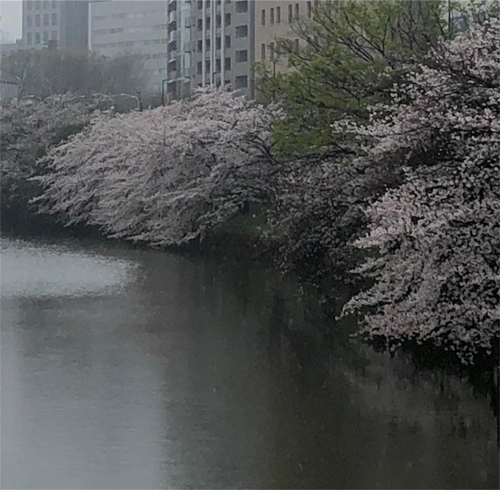 f:id:yoshikokawano1:20200401190928j:image