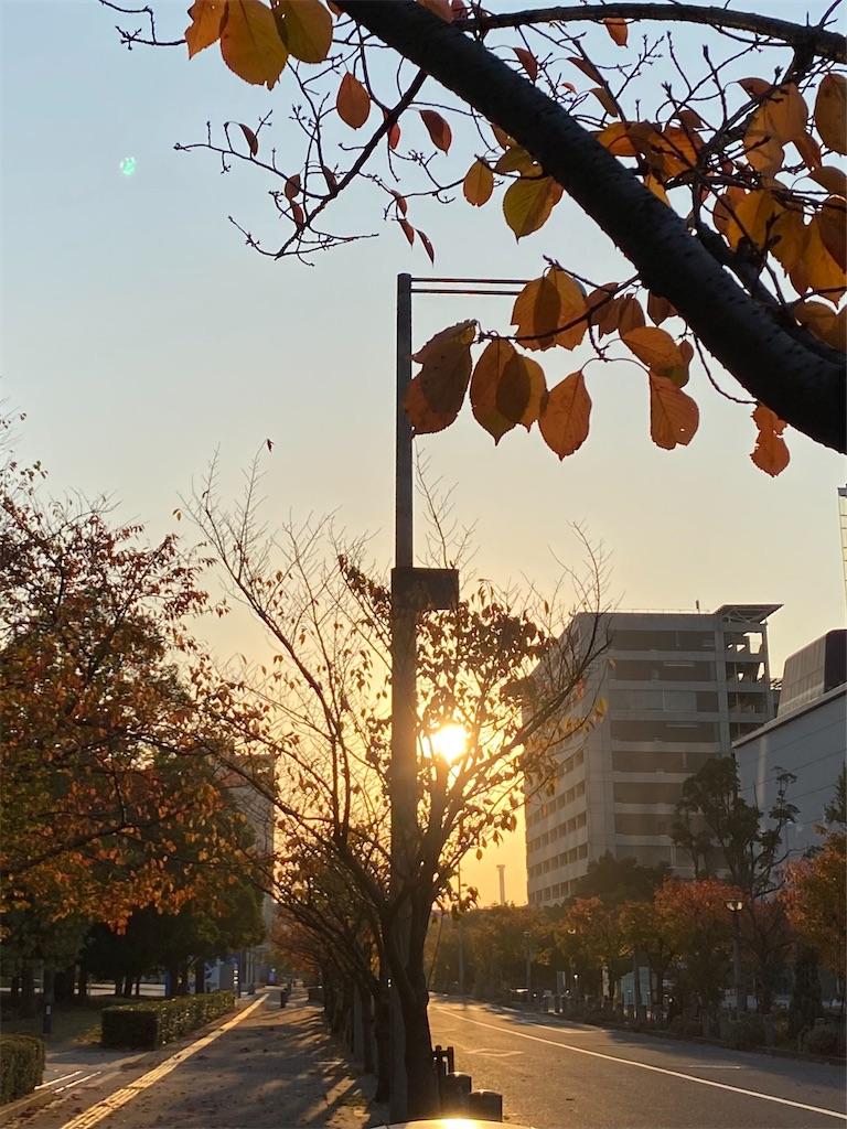 f:id:yoshikokawano1:20201120185918j:image